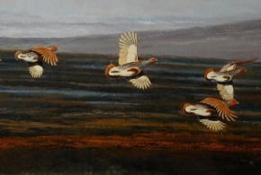 """""""Kuropatwy""""2009, 36x61cm, akryl na płycie"""