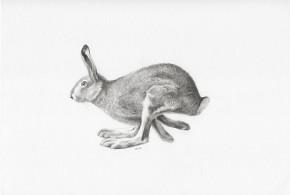rysunek-engravercs-03