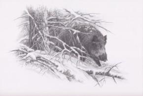 rysunek-engravercs-11